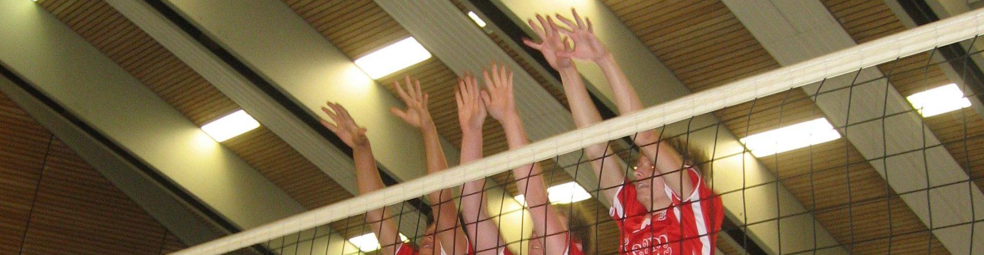 EK Volleyball